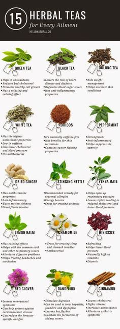 Green tea is not the only tea with promising health benefits. This illustrates and describes 14 other healing herbal teas.