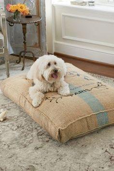 Grain Sac Pet Cushion from Soft Surroundings