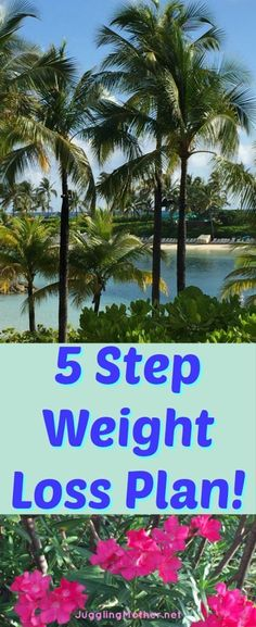 Are you having trouble losing weight?  Have you made changes, but…