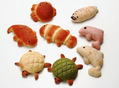 (◕‿‿◕。) • Bread of the Kyoto Aquarium Sooooo CUTE!!! A marine living thing is the bread of a theme.   A dolphin, a seal, a crab, a tortoise, a clown fish, etc.   It is a new sightseeing place in Kyoto!