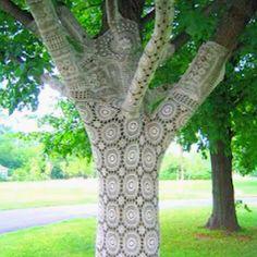 Yarn bomb tree.