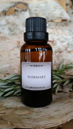 "Rosemary has been called ""the scent of health"" for good reason! It's one of the most popular oils known for body strengthening and healing, fighting everything from bacteria to germs to fungus, this o"