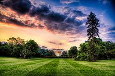 The White House - Washington D.C.
