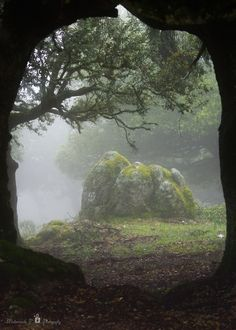 *by Mademoiselle-P. Misty stone outcropping. Reminds me of Fairyland. Eerie yet peaceful.