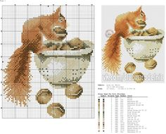 0 point de croix grille écureuil et son bol de noix