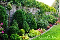 http://www.ogrodowisko.pl/watek/5145-wizytowka-ogrodowe-przygody