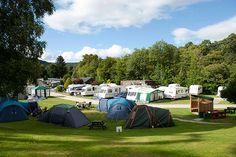 Black Rock Caravan Park, Evanton, Ross-Shire. Pet Friendly Camping Holiday in Scotland. Accepts Dogs #WeAcceptPets