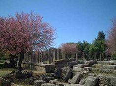 Olympia Excursions in Zante  #greece   #greekislands   #excursion   #thingstodo   #justbookecursions  #zante
