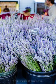 Ferry Plaza Farmers Market | Kitchen Confidante | Lavender