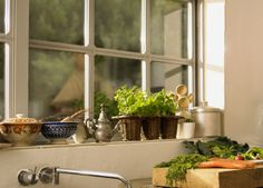 Family Home and Life: Fresh Herbs in Winter