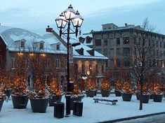 Christmas Time, Place Jacques-Cartier, Old Montreal