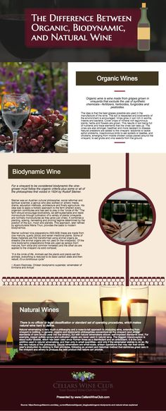 difference between organic biodynamc and natural wine
