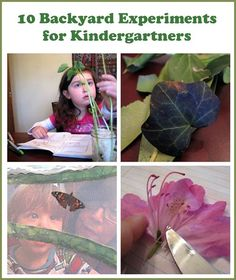 Kids Love Exploring Mother Nature's Science Curriculum