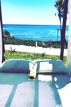 Soaking up the last days of spring break. can find No sugar snacks and more on our website.Soaking up the last days of spri. No Sugar Snacks, No Sugar Diet, Spring Break, Sun Lounger, Relax, Photographs, Photos, Outdoor Decor, Plate