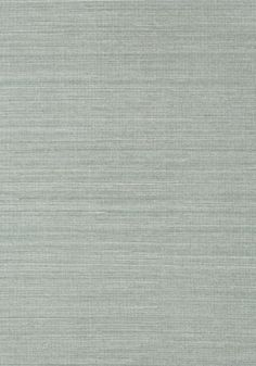 Click To Zoom In - Thibaut Shang Extra Fine Sisal Mineral T41168