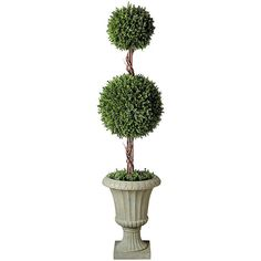 "Improvements 32"" Cedar Double Ball Topiary (1.245 CZK) ❤ liked on Polyvore featuring home, home decor, floral decor, plants, filler, flowers, decor, garden sculptures, 425943 and cedar ball topiary tree"