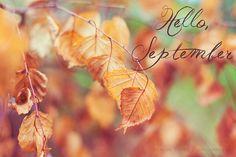 Hello September by TorriPhoto