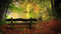 L' ultimo autunno/ El ùltimo otoño