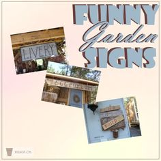 Funny Garden Signs - witty, whimsical and comical painted and rustic signs... Gardening