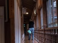 Gotta love the woodwork in old Japanese onsen, this is the internal corridor running next to the outside of the building.