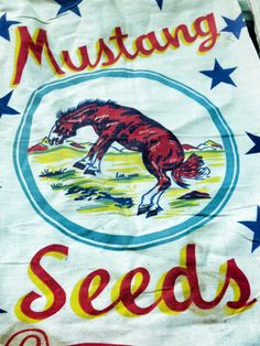 Vintage flour sack from a private collection-at the MN State Fair Flour Sacks, Mustang, Kids Rugs, Bags, Collection, Vintage, Home Decor, Handbags, Mustangs