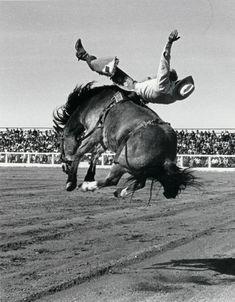 reminds me of my dad. rodeo cowboy. poet. entrepreneur. politician. doing good.