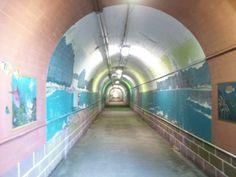トンネルの壁面、両側に魚の絵が! こう言う事か。