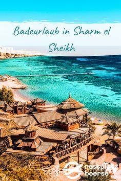 Du möchtest verreisen, weißt aber noch nicht wohin? Ich kann dir bestimmt weiterhelfen. Stehst du auf endlose, feine Sandstrände, wohlig warme Meerestemperaturen und eine zum Tauchen einladende Unterwasserwelt? Dann haben wir DIE Reisedestination für dich: Sharm el Sheikh #Urlaub #Tipps #Urlaub #Reisen #Sharm el Sheik Sharm El Sheikh, Hotels, Strand, Movies, Movie Posters, Vacation Travel, Diving, Travel Advice, Films