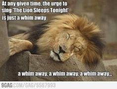 a whim a-a-away...lol