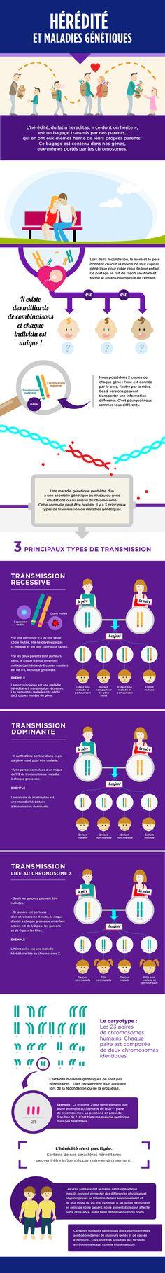 L'hérédité et maladies génétiques