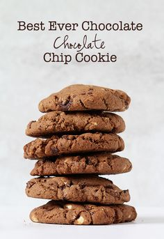 BEST Ever Chocolate Chocolate Chip Cookies