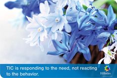 TIC is...responding to the need, not reacting to the behavior
