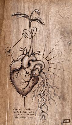 Seedling heart.