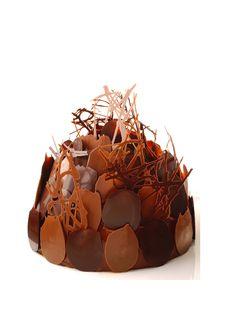 [Premium] Buisson chocolat-praliné par Alain Ducasse #AlainDucasse #AcademieDuGout #chocolate https://www.academiedugout.fr/recettes/buisson-chocolat-praline_5077_2