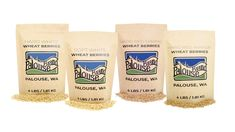 Non-GMO certified, Non-Irradiated and Kosher Pareve Wheat Berries. Our products are also field traceable, which means, since we are the farmer and the seller, we can give you the exact field location for each bag. Homemade Tortilla Chips, Homemade Tortillas, Whole Wheat Bread, Whole Wheat Flour, Fall Recipes, Whole Food Recipes, Best Party Snacks, Wheat Berry Salad, Baking Power