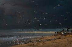 Huntington Beach, California, Movies, Movie Posters, Painting, Art, Art Background, Films, Film Poster
