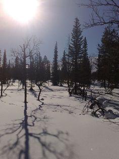 Ylläs, Finland Photo by: Jonna Muurinen #travel, #ylläs, #finland, #snow…