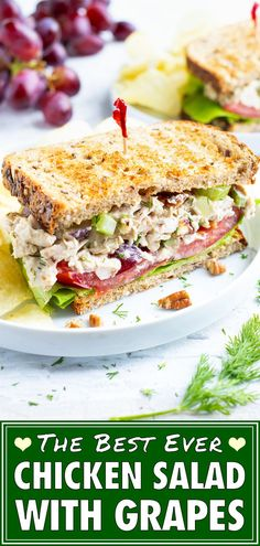 Chicken Salad with Grapes is an easy and healthy sandwich recipe for a quick lunch or picnic that is made with shredded chicken, pecans, and mayonnaise. Healthy Picnic Foods, Healthy Sandwich Recipes, Healthy Sandwiches, Easy Salad Recipes, Picnic Recipes, Grape Recipes, Eating Healthy, Lunch Recipes, Healthy Eats