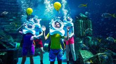 Take your Easter egg hunting skills underwater with our eggciting underwater adventure! Get on our scuba gear and head underwater in our shallow pool while you look out for our bright eggs on the pool floor!
