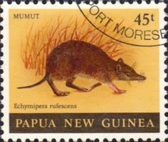 Postage Stamps Papua New Guinea 1980 Mammals Set Fine Mint SG 397/400 Scott 525/8 Other Papua New Guinea Stamps HERE!