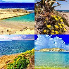 """Buen jueves #Alifornia! Hoy un adelanto de mi nuevo post que estoy terminado de editar """"Ruta en Alicante costera natural y urbana"""" para antes de vacaciones; veréis que chulo. 🌅😃 #Alicante #CostaBlanca"""