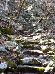 Steps on Summit Park Trail at Mount Nebo---Dardanelle, Arkansas