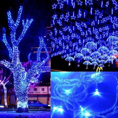 50M 300 LED Blue Lights Decorative Wedding Fairy Christmas Tree Party Twinkle String Lighting EU