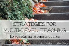 Strategies for multi level teaching