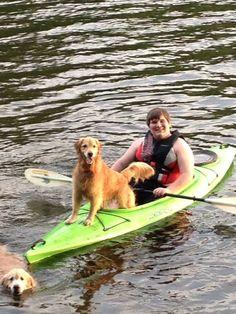 Kayak dog! http://ift.tt/2pUcPxz