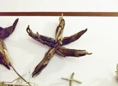 Driftwood Sculpture Starfish or Star Wall Hanging by DriftingIdeas, $369.99