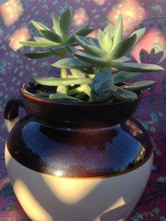 Vintage Medium Stoneware Pot TwoTone Crock Farm by A2ndLifeCactus, $17.95
