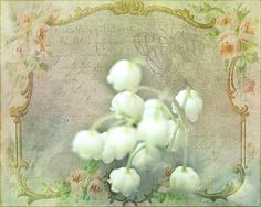 Antique Lilies of the Valley - Photography/digital art by Terry Fleckney