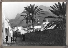 Gran Canaria -  Agaete año 1940...... #fotoscanariasantigua #tenerifesenderos #fotosdelpasado #canariasantigua #canaryislands #islascanarias #blancoynegro #recuerdosdelpasado #fotosdelrecuerdo