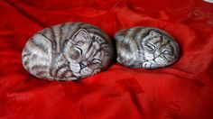 sleeping cats painted on roks